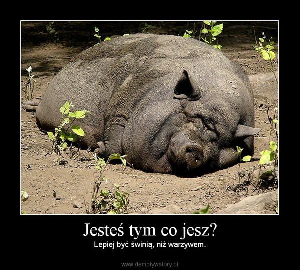 Jesteś tym co jesz? – Lepiej być świnią, niż warzywem.