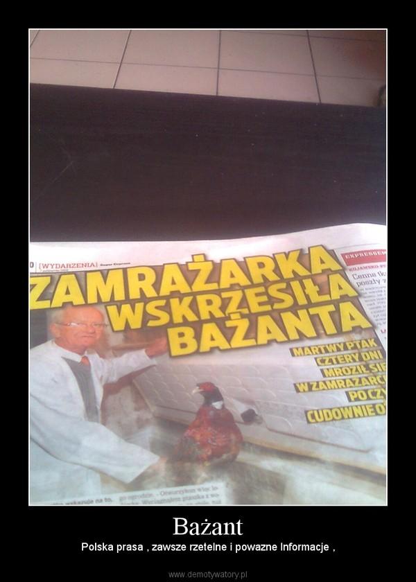 Bażant – Polska prasa , zawsze rzetelne i powazne Informacje ,