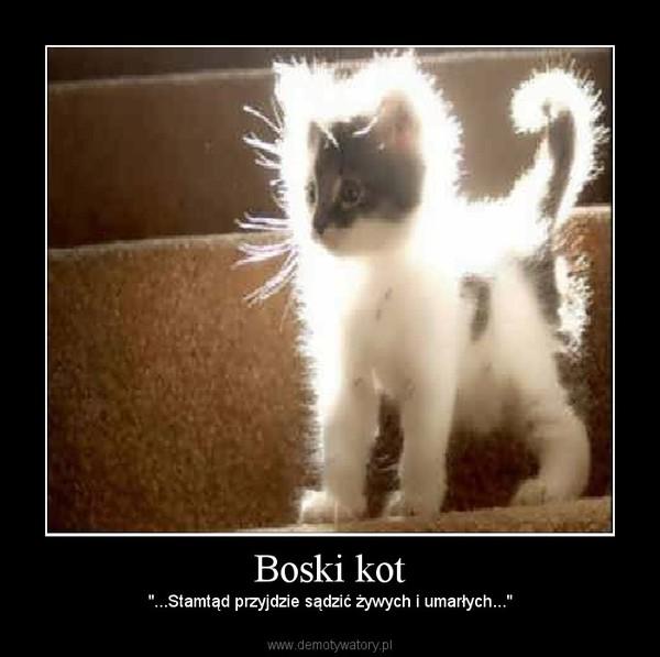 """Boski kot – """"...Stamtąd przyjdzie sądzić żywych i umarłych..."""""""