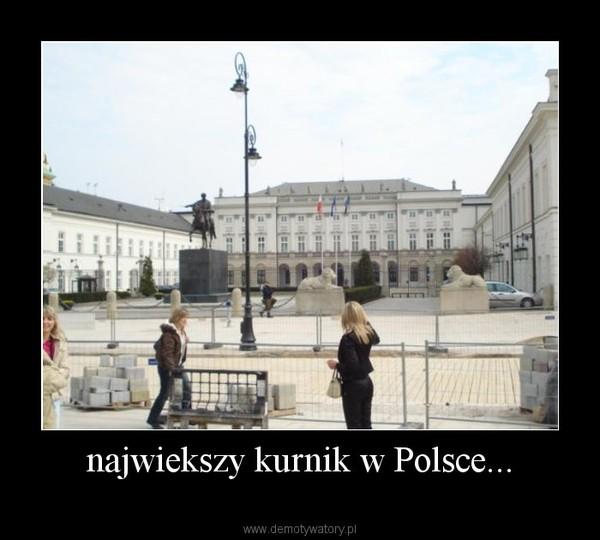 najwiekszy kurnik w Polsce... –