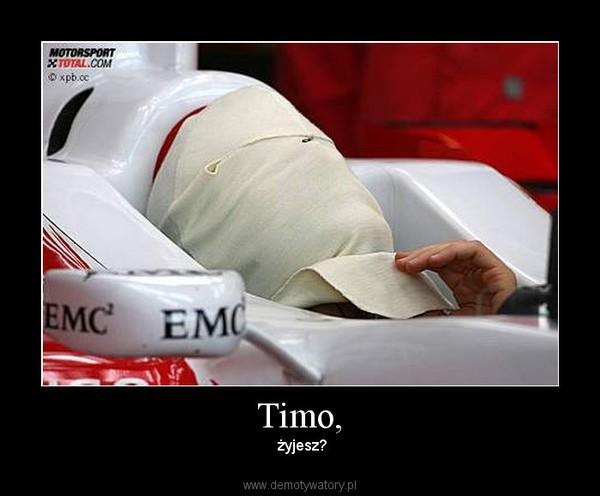 Timo, –  żyjesz?