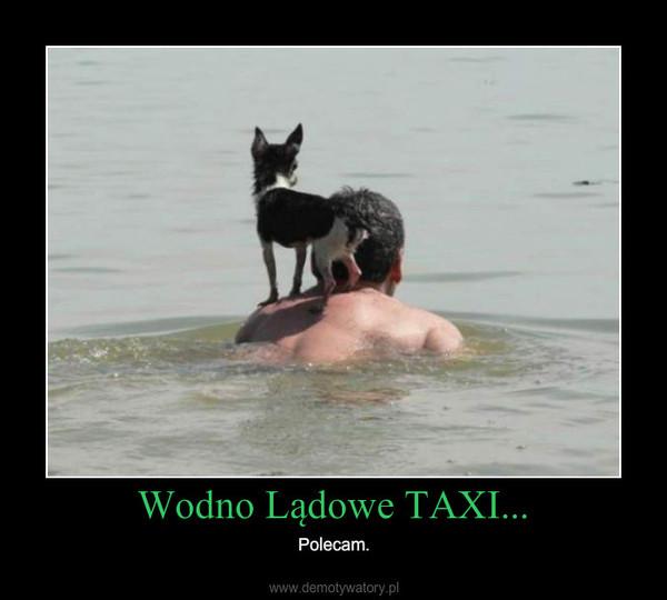 Wodno Lądowe TAXI... – Polecam.