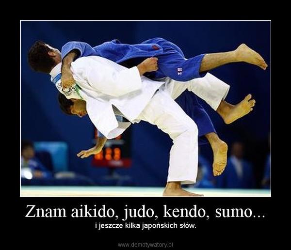 Znam aikido, judo, kendo, sumo... – i jeszcze kilka japońskich słów.