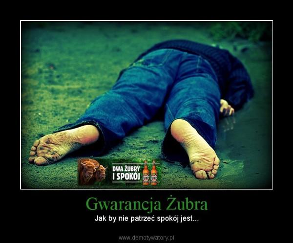 Gwarancja Żubra – Jak by nie patrzeć spokój jest...