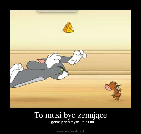 To musi być żenujące – ...gonić jedną mysz już 71 lat
