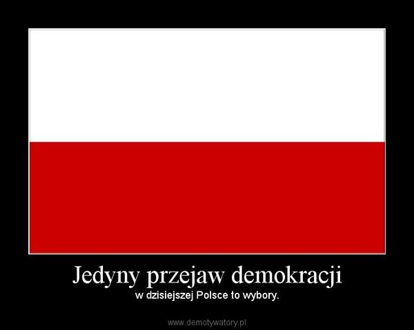 Jedyny przejaw demokracji – w dzisiejszej Polsce to wybory.