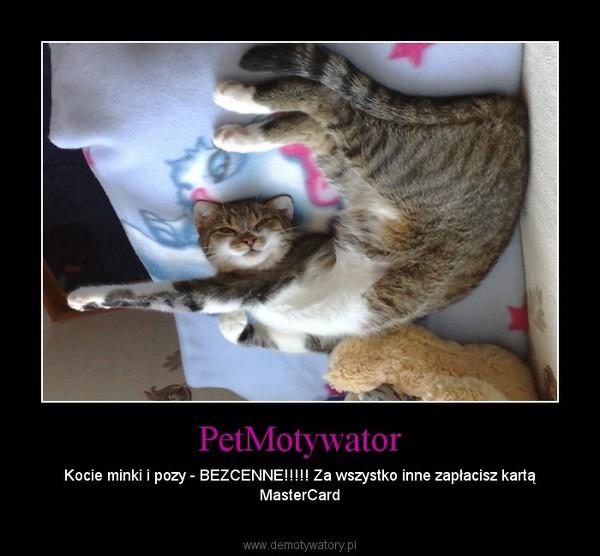 PetMotywator – Kocie minki i pozy - BEZCENNE!!!!! Za wszystko inne zapłacisz kartą MasterCard
