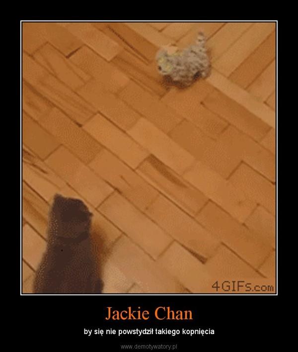Jackie Chan – by się nie powstydził takiego kopnięcia