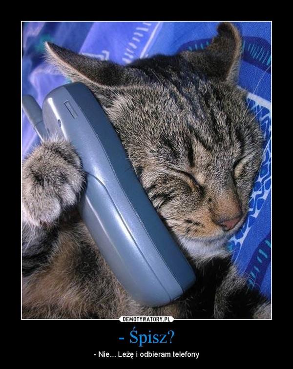 - Śpisz? – - Nie... Leżę i odbieram telefony