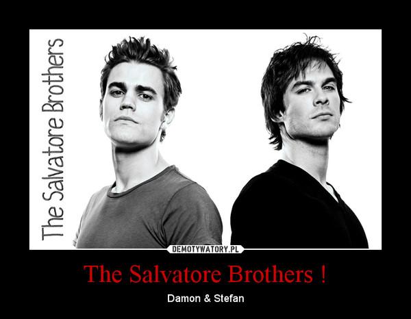 The Salvatore Brothers ! – Damon & Stefan