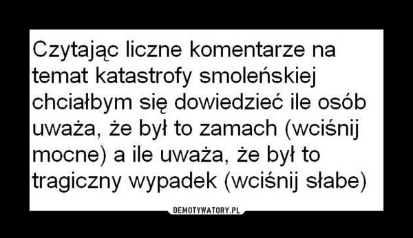 Ankieta smoleńska –
