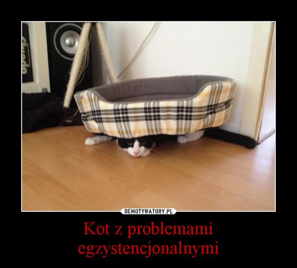 Kot z problemami egzystencjonalnymi –