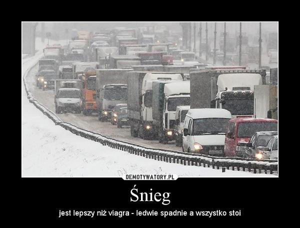 Śnieg – jest lepszy niż viagra - ledwie spadnie a wszystko stoi