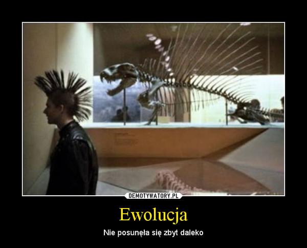 Ewolucja – Nie posunęła się zbyt daleko