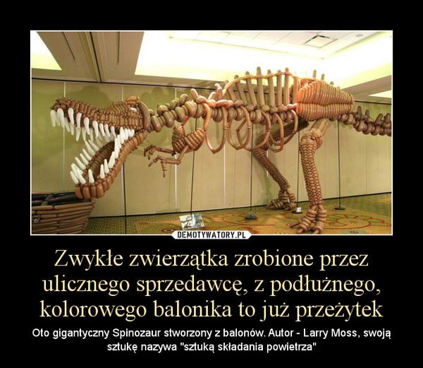 """Zwykłe zwierzątka zrobione przez ulicznego sprzedawcę, z podłużnego, kolorowego balonika to już przeżytek – Oto gigantyczny Spinozaur stworzony z balonów. Autor - Larry Moss, swoją sztukę nazywa """"sztuką składania powietrza"""""""