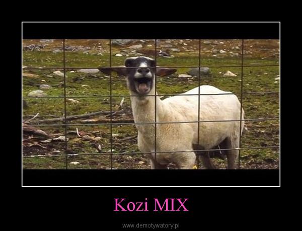 Kozi MIX –