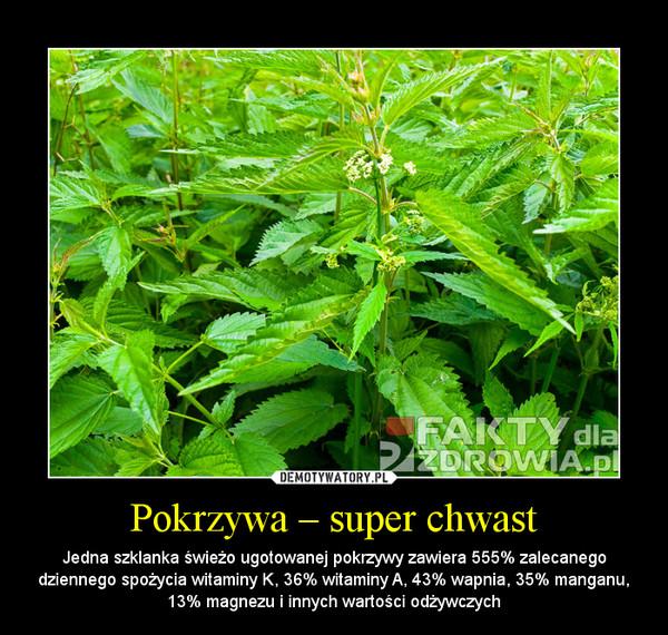 Pokrzywa – super chwast – Jedna szklanka świeżo ugotowanej pokrzywy zawiera 555% zalecanego dziennego spożycia witaminy K, 36% witaminy A, 43% wapnia, 35% manganu, 13% magnezu i innych wartości odżywczych