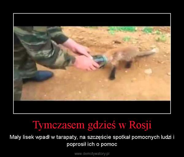 Tymczasem gdzieś w Rosji – Mały lisek wpadł w tarapaty, na szczęście spotkał pomocnych ludzi i poprosił ich o pomoc