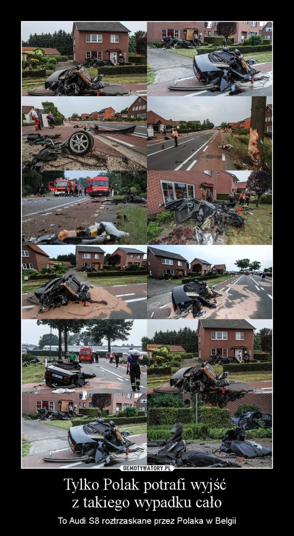 Tylko Polak potrafi wyjść z takiego wypadku cało – To Audi S8 roztrzaskane przez Polaka w Belgii