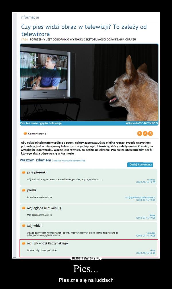 Pies... – Pies zna się na ludziach