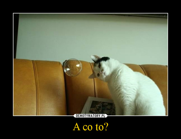 A co to? –