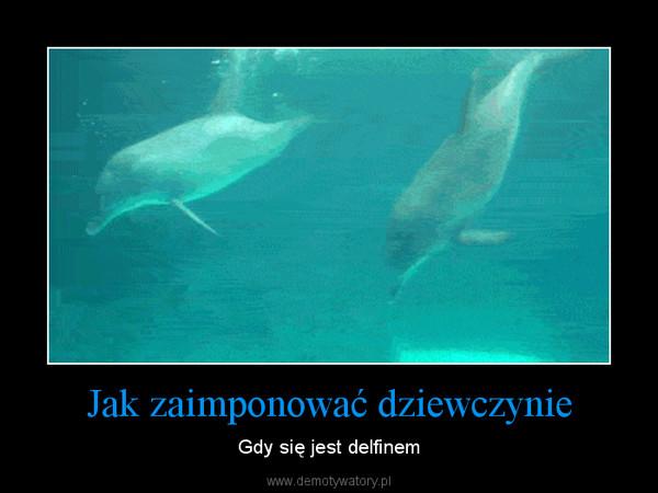 Jak zaimponować dziewczynie – Gdy się jest delfinem