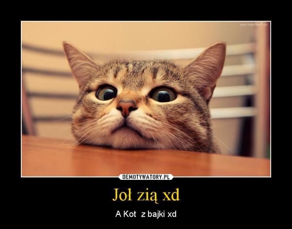 Joł zią xd – A Kot  z bajki xd