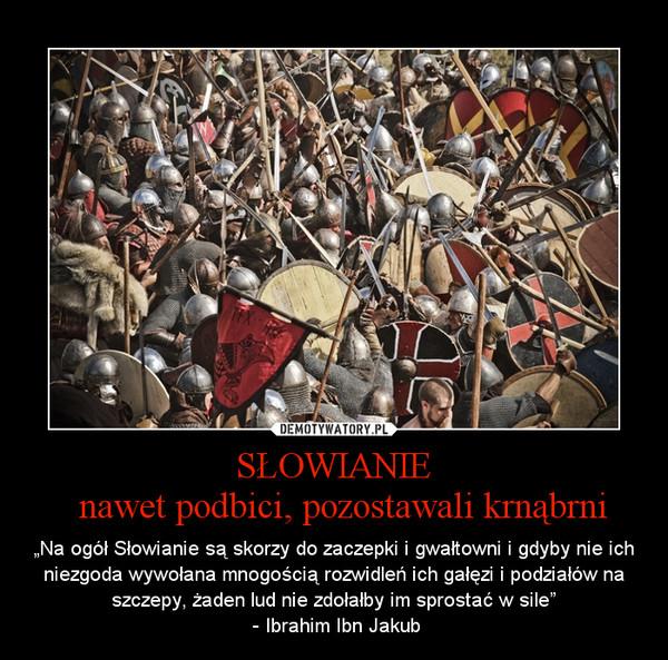 """SŁOWIANIE  nawet podbici, pozostawali krnąbrni – """"Na ogół Słowianie są skorzy do zaczepki i gwałtowni i gdyby nie ich niezgoda wywołana mnogością rozwidleń ich gałęzi i podziałów na szczepy, żaden lud nie zdołałby im sprostać w sile""""\n - Ibrahim Ibn Jakub"""