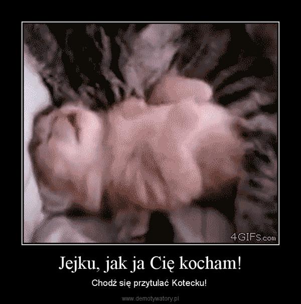 Jejku, jak ja Cię kocham! – Chodź się przytulać Kotecku!