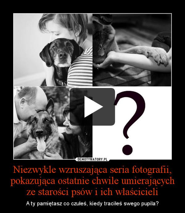 Niezwykle wzruszająca seria fotografii, pokazująca ostatnie chwile umierających ze starości psów i ich właścicieli – A ty pamiętasz co czułeś, kiedy traciłeś swego pupila?