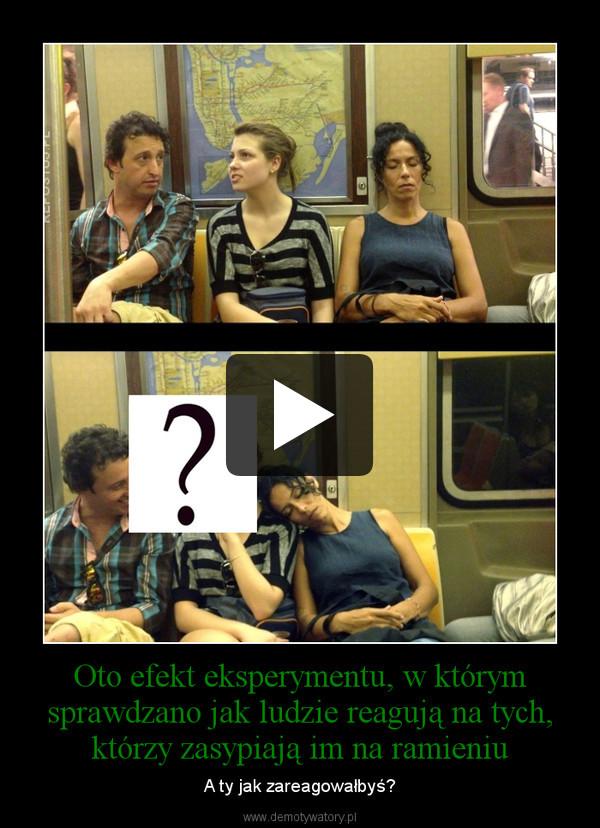 Oto efekt eksperymentu, w którym sprawdzano jak ludzie reagują na tych, którzy zasypiają im na ramieniu – A ty jak zareagowałbyś?