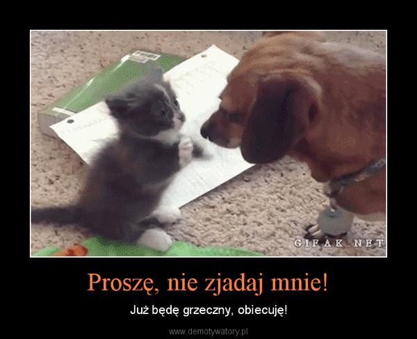 Proszę, nie zjadaj mnie! – Już będę grzeczny, obiecuję!