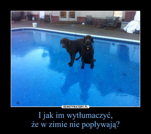 I jak im wytłumaczyć,że w zimie nie popływają? –