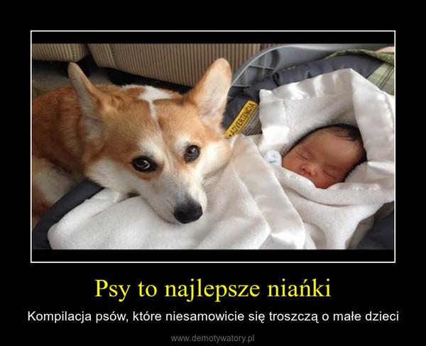 Psy to najlepsze niańki – Kompilacja psów, które niesamowicie się troszczą o małe dzieci