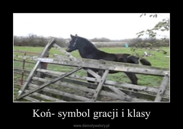 Koń- symbol gracji i klasy –