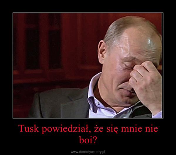 Tusk powiedział, że się mnie nie boi? –