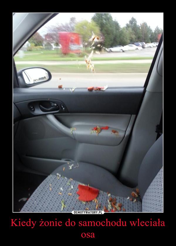 Kiedy żonie do samochodu wleciała osa –
