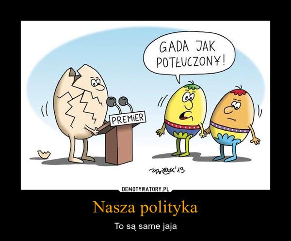 Nasza polityka – To są same jaja