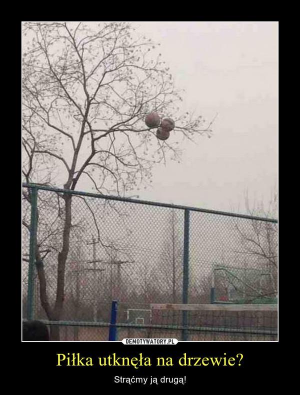 Piłka utknęła na drzewie? – Strąćmy ją drugą!
