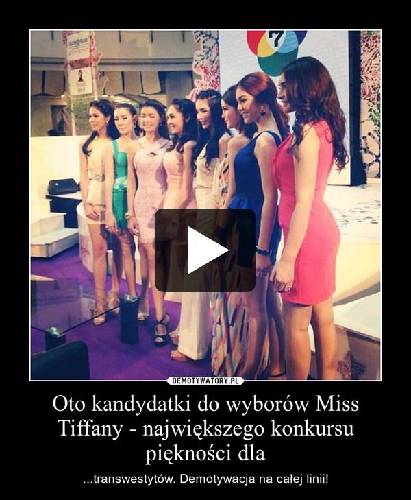 Oto kandydatki do wyborów Miss Tiffany - największego konkursu piękności dla – ...transwestytów. Demotywacja na całej linii!