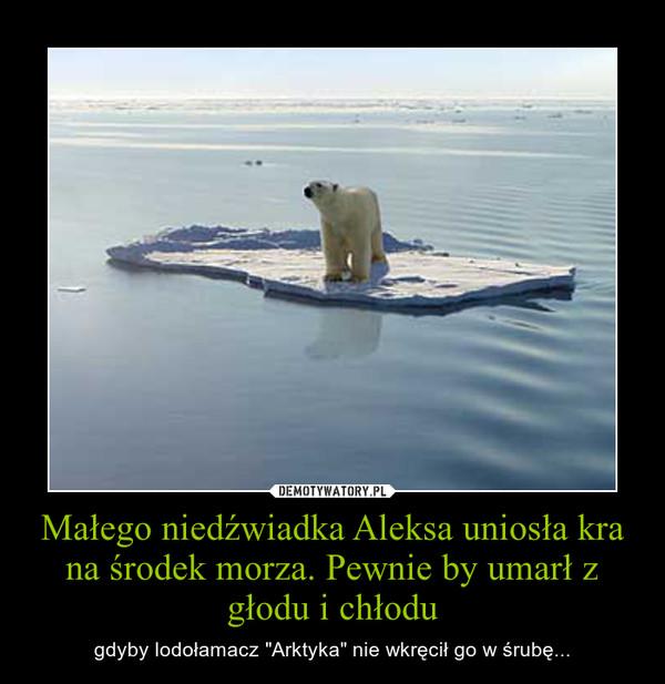 """Małego niedźwiadka Aleksa uniosła kra na środek morza. Pewnie by umarł z głodu i chłodu – gdyby lodołamacz """"Arktyka"""" nie wkręcił go w śrubę..."""