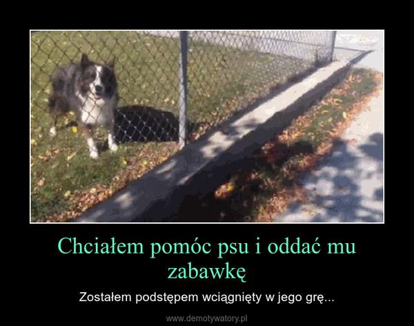 Chciałem pomóc psu i oddać mu zabawkę – Zostałem podstępem wciągnięty w jego grę...