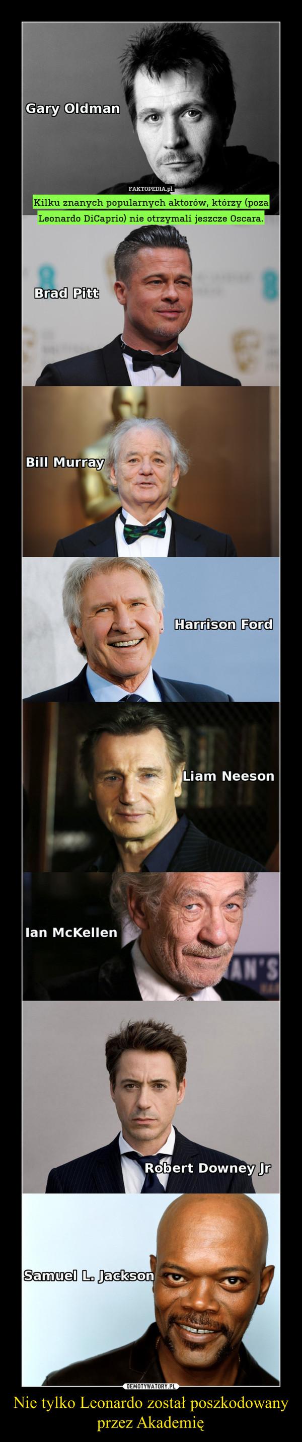 Nie tylko Leonardo został poszkodowany przez Akademię –