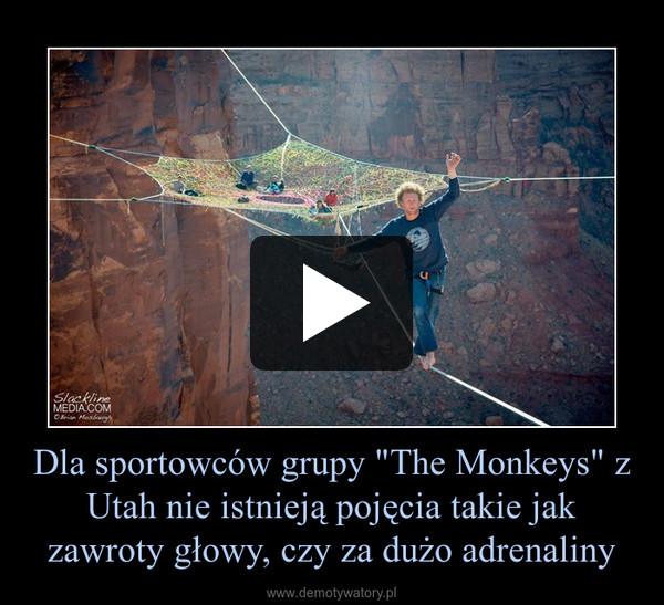 """Dla sportowców grupy """"The Monkeys"""" z Utah nie istnieją pojęcia takie jak zawroty głowy, czy za dużo adrenaliny –"""