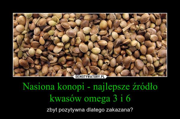 Nasiona konopi - najlepsze źródło kwasów omega 3 i 6 – zbyt pozytywna dlatego zakazana?