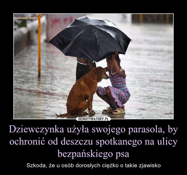 Dziewczynka użyła swojego parasola, by ochronić od deszczu spotkanego na ulicy bezpańskiego psa – Szkoda, że u osób dorosłych ciężko o takie zjawisko