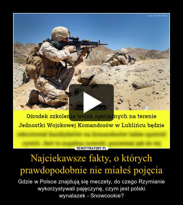 Najciekawsze fakty, o którychprawdopodobnie nie miałeś pojęcia – Gdzie w Polsce znajdują się meczety, do czego Rzymianie wykorzystywali pajęczynę, czym jest polskiwynalazek - Snowcookie?