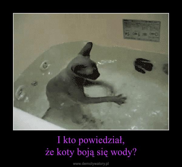 I kto powiedział,że koty boją się wody? –