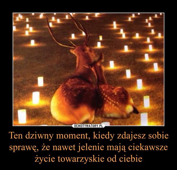 Ten dziwny moment, kiedy zdajesz sobie sprawę, że nawet jelenie mają ciekawsze życie towarzyskie od ciebie –