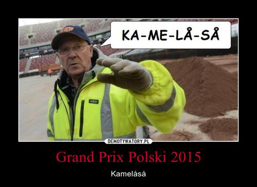 Grand Prix Polski 2015